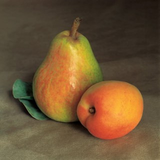 pear-and-apricot